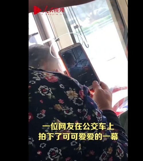 老奶奶坐公交对着司机的头扫码,真是可爱的误会