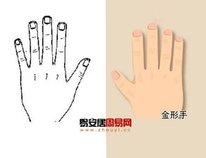 手上五指各属于哪种五行(手掌与五行是怎样的对应关系,代表人体的哪