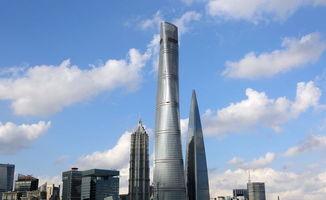 公司在上海的与建筑材料有关的股票有哪几只?