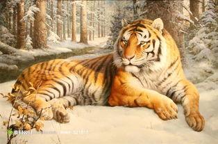 老虎绘画艺术图片