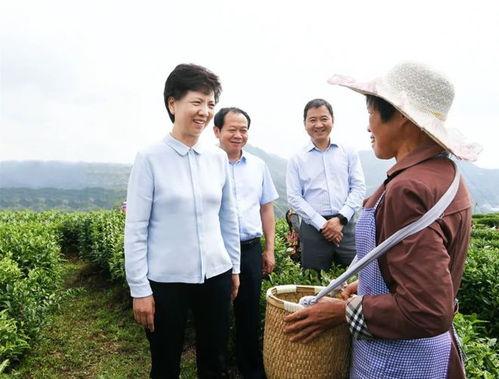摄谌贻琴走遍纳雍县全部乡镇推进脱贫攻坚:再鼓