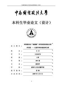 河南财大毕业论文