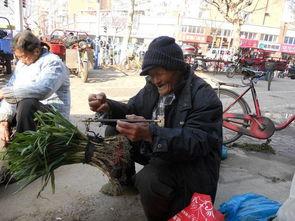 实拍农村卖菜老人,遇到这样的老人尽量就多买一点菜吧
