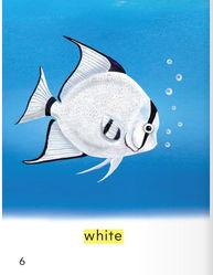 少儿英语学单词原版书幼儿级第5本 Fish Colors 鱼的颜色