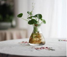 生活小妙招用什么养花