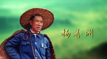 杨善洲典型之窗三峡党建网