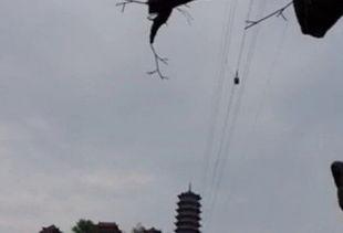 小伙儿乘坐大冶小雷山索道时被卡从百米高空坠亡图
