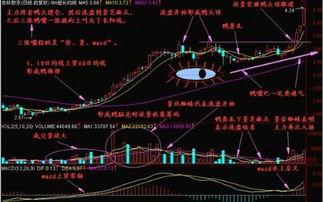 股票怎么买卖,怎么把钱弄出来,放进去,如何操作?