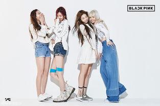 组图 YG新女团定名BLACKPINK 四人组合出道