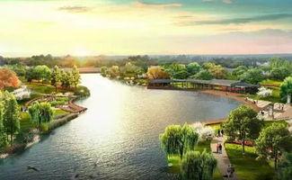 合肥四里河附近哪里可以免费钓鱼
