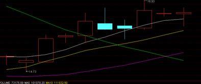 股票里的紫,黄,白.分别代表什么意思 ? 有哪几种情况?