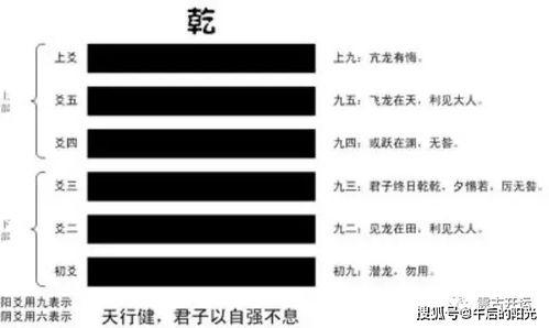 翻译白话文(【地势坤,是什么意思,通俗的理解)