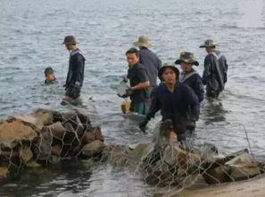 保卫南海,中国填海造陆神器大显神威