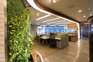办公空间按照使用功能划分的类别