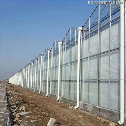 什么是全玻璃温室大棚?  光的作用是什么
