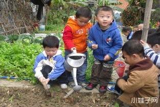 幼儿爱护花草树木的教案范文