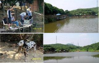 深圳有什地方可以钓鱼免费