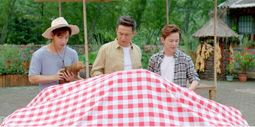 向往的生活湖南卫视播放黄磊何炅回归至质朴农舍