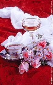 玫瑰香槟图片