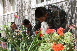 种草养花技术