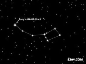 北极星属于什么星座(北极星属于什么座)