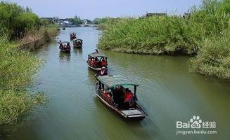 上海周边自驾游攻略-精致短途旅游指南