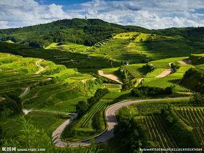 乡村自然风景图片