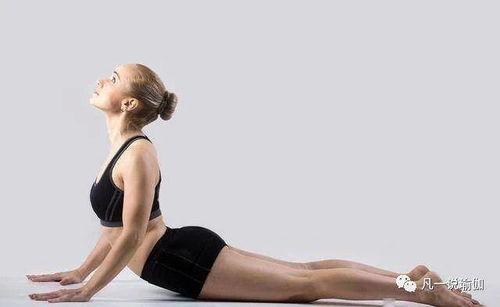 健身的身材和瑜伽的身材对比