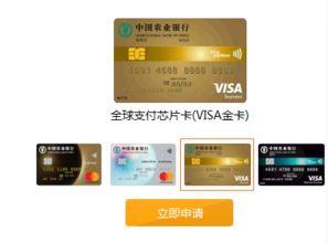 visa信用卡国内能用吗(VISA信用卡能在国)