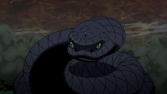 火影忍者 佐助最帅的5只坐骑,青蛇上榜,最后一只雏田也拥有