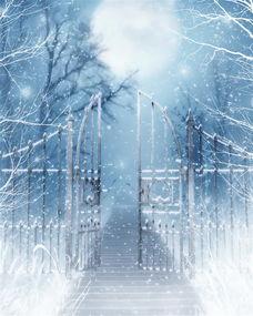重庆大雪纷飞的金佛山风景区, 你去旅游过吗?