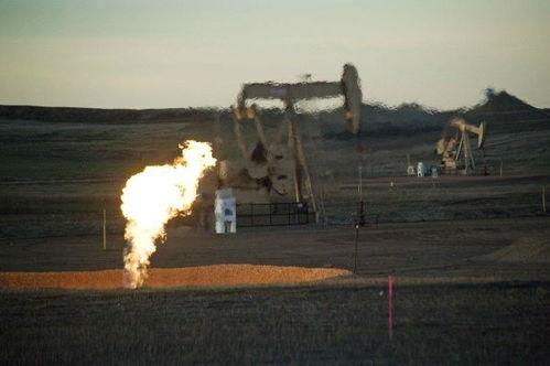赶超沙特美国一度成全球最大原油出口国