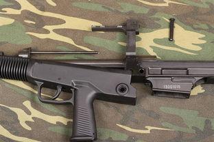 中国出口哪些步枪轻武器