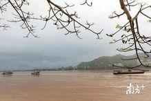 有关部门已到事发现场进一步调查,广济桥的受损情况有待专家再确认.