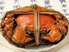螃蟹如何吃(煮螃蟹怎么吃)