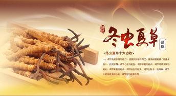 北京回收同仁堂冬虫夏草 回收海参 回收虫草