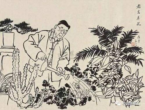 老舍养花的教学建议