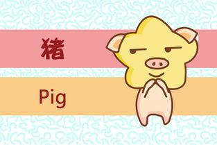 1971年出生的猪五行属什么(七一年的猪五行中是什么猪)