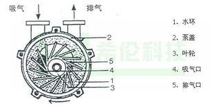 供应2BV水环式真空泵