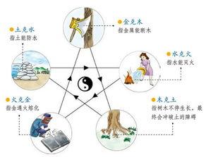 什么是五行学说(阴阳五行学说)