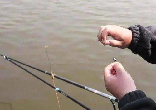 钓鱼用什么可以代替铅皮
