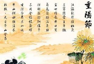 小学的关于重阳节的诗句有哪些