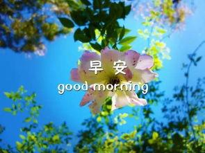 耶稣早安祝福语怎么会