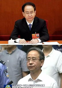 原全国政协副主席、统战部部长令计划落马前后