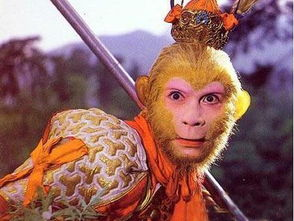 猴年说猴 齐天大圣来自何方
