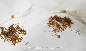 冬虫夏草烟和润(冬从夏草香烟怎么样)