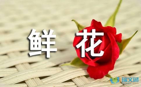 有关鲜花的四字词语