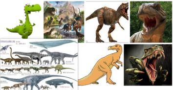 恐龙特点四客服语