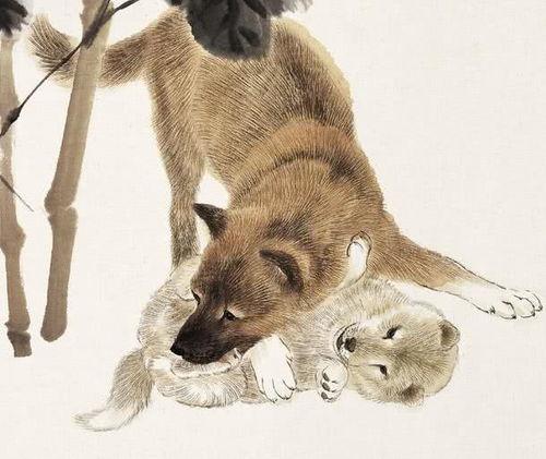 属狗的和什么属相最合财,财越旺(属狗的人在今年哪个方向财运好)