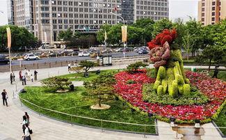 北京 花坛迎盛会